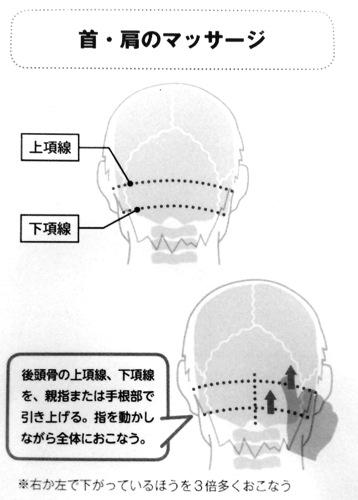 首 肩のマッサージ 第4章