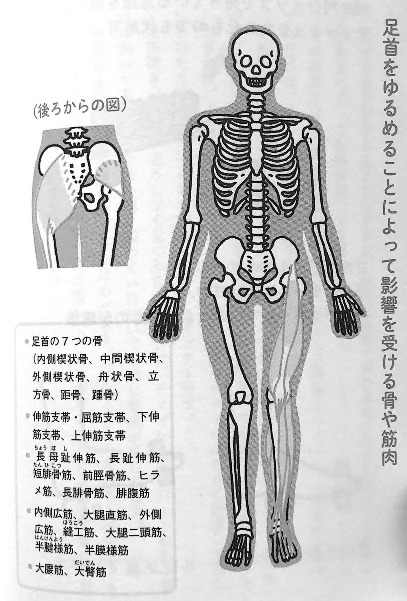 図2 2 足首のゆるめ方 第2章P88