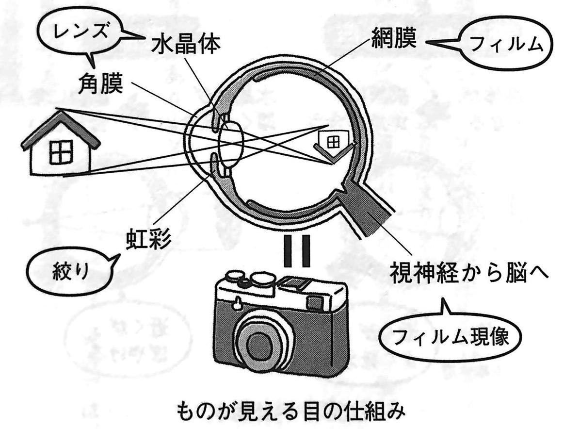 図1 ものが見える目の仕組み PART1P19