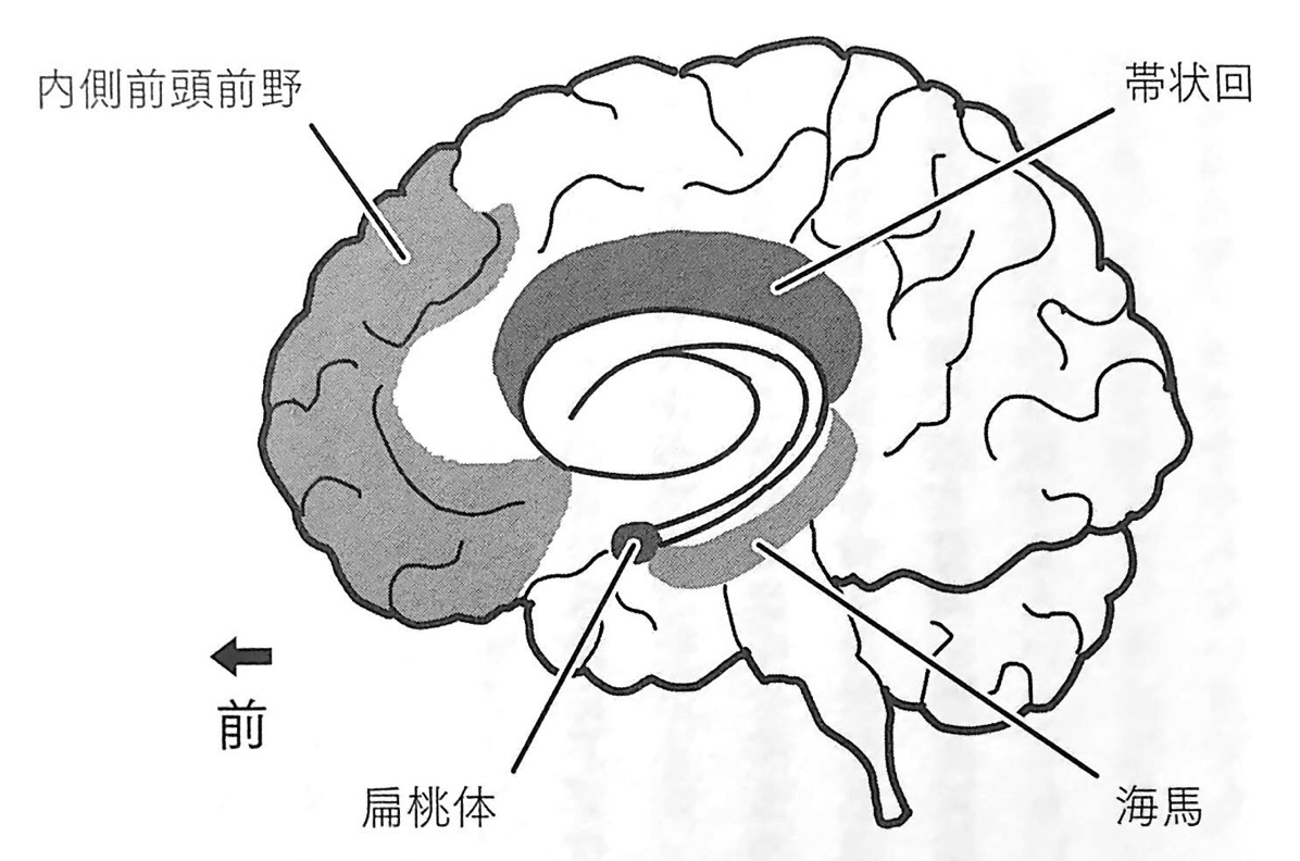 図1 デフォルトモードネットワークの回路 第1章P35