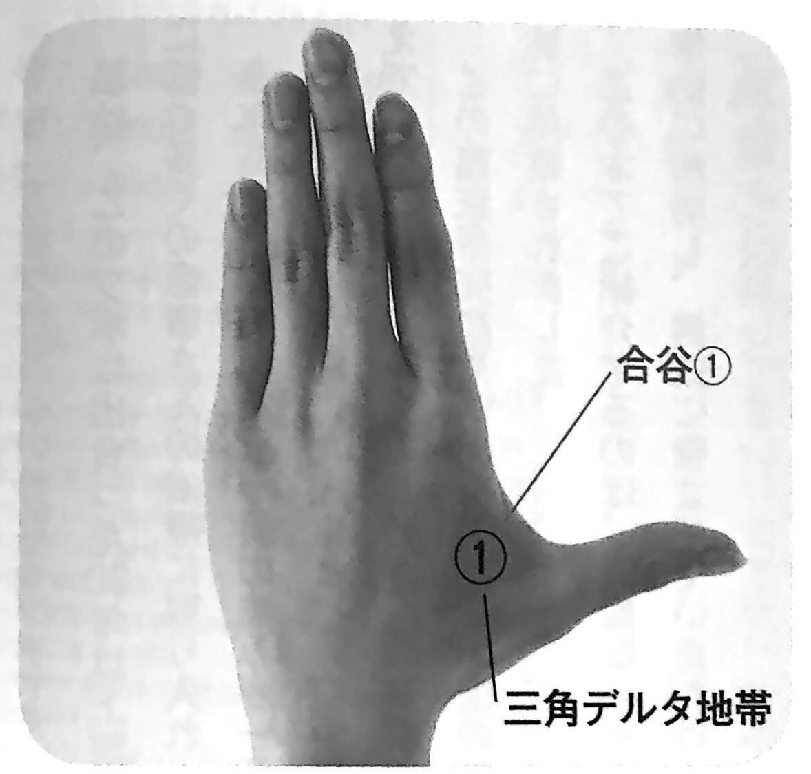 合谷① 長生きスイッチ イントロ