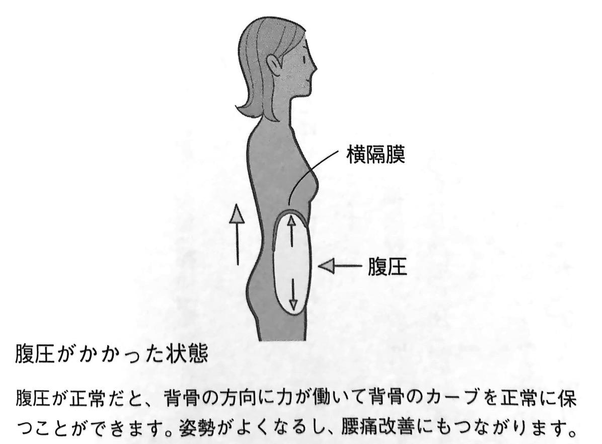 図2 腹圧がかかった状態 お尻をしめなさい PART1
