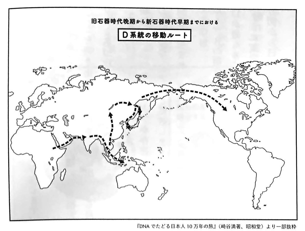 図2 D系統の移動ルート 超日本史 第1章