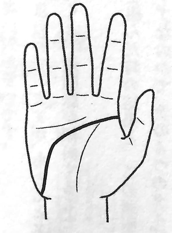 図2 頭脳線のパターン② 手だけで本性がわかる 第1章 jpg