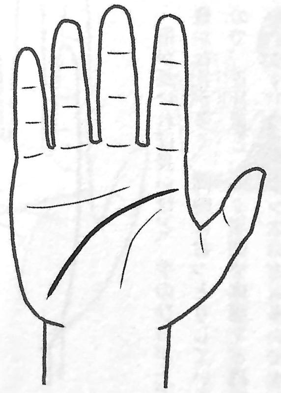 図6 地の手タイプ② 手だけで本性がわかる 第3章