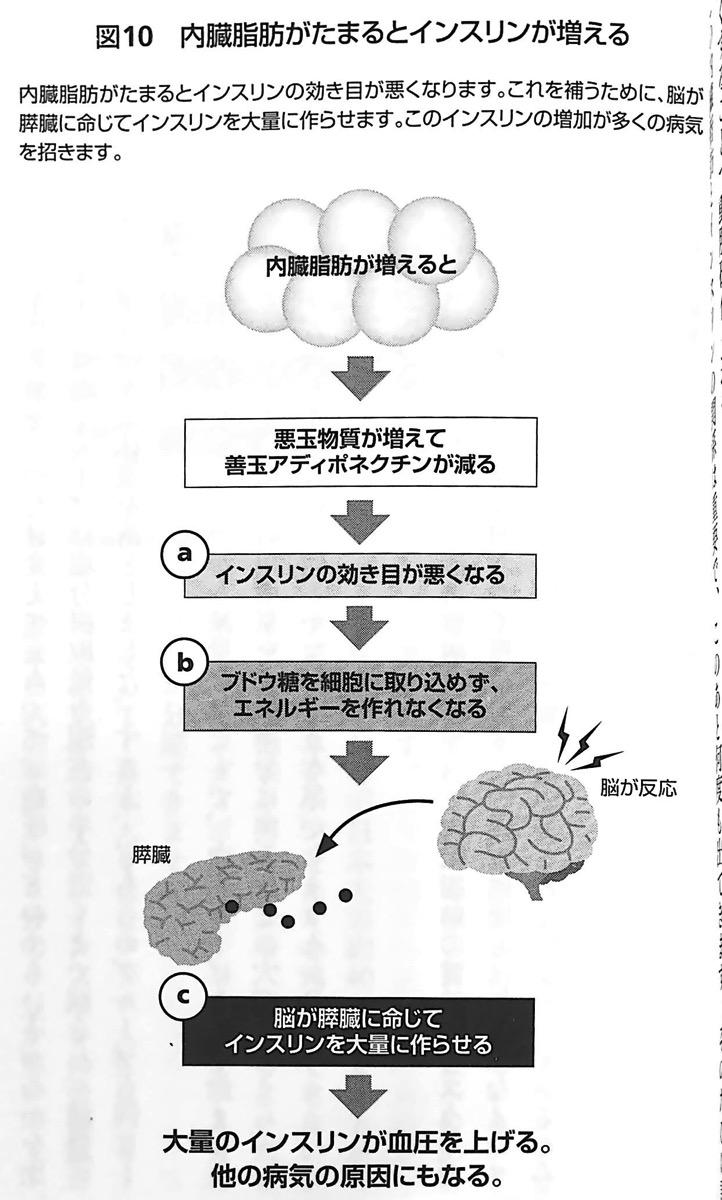 図10 内臓脂肪がたまるとインスリンが増える 内臓脂肪を最速で落とす 第2章