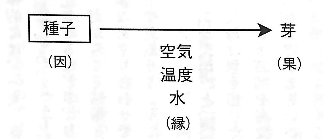 図2 因 と 果 の関係 唯識 で出会う未知の自分第3章