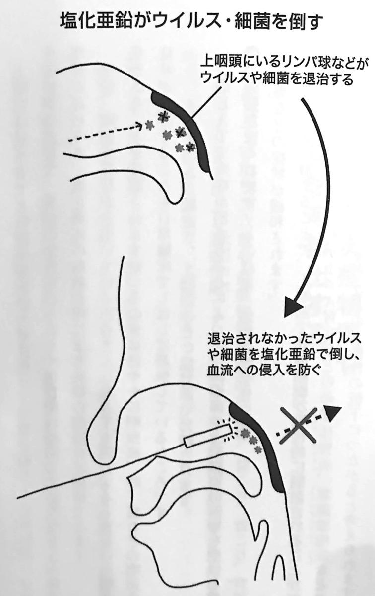 図4 塩化亜鉛がウイルス 細菌を倒す 慢性上咽頭炎を治しなさい 第3章