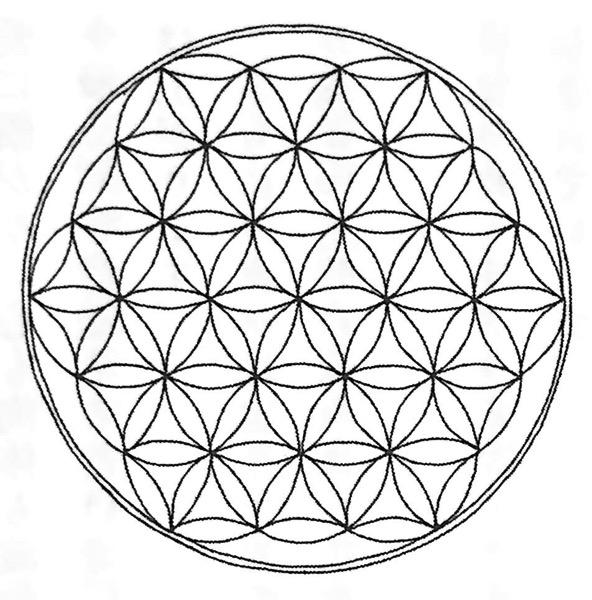 図1−2 マカバ と フラワーオブライフ エナの超シンプルな生き方 STEP2 第3章
