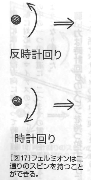 図17 フェルミオンは二通りのスピンを持つことができる 強い力 と 弱い力 第4章